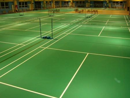 惠州PVC羽毛球场