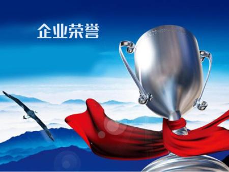 辽宁贝隆电机企业荣誉证书