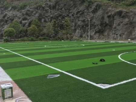 贵州省务川县民族体育馆足球场及围网完工,广西人造草坪