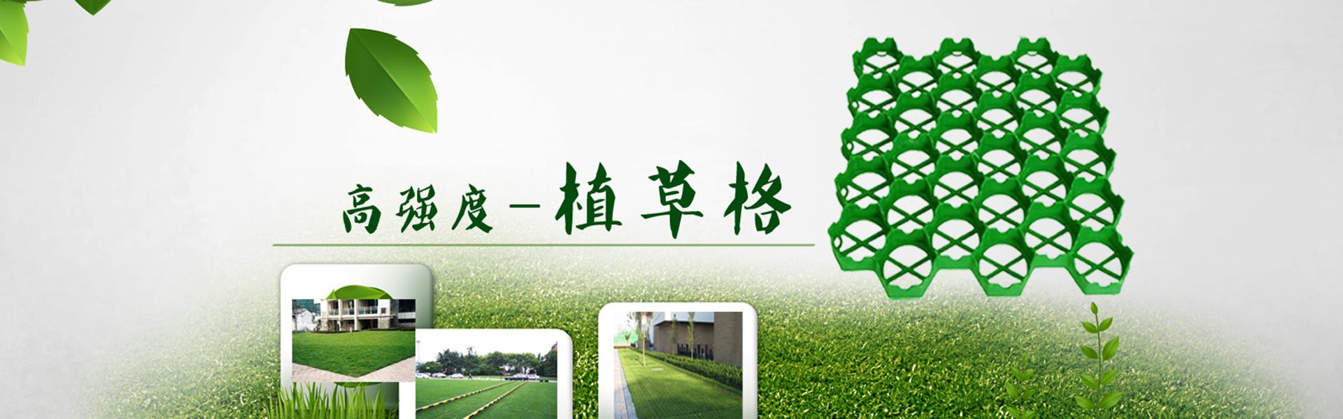 山東塑料植草格