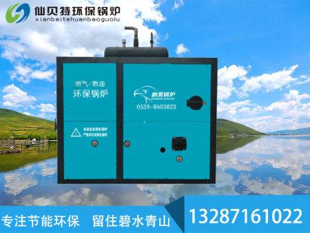 燃氣(油)環保鍋爐
