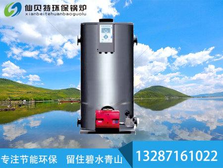 立式熱水爐