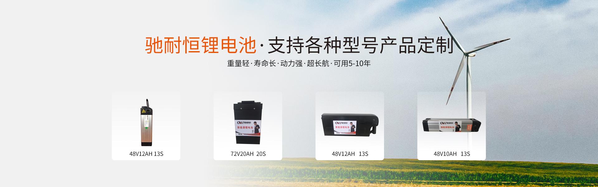 新国标锂电池,锂电池生产厂家,锂电池批发,锂电池