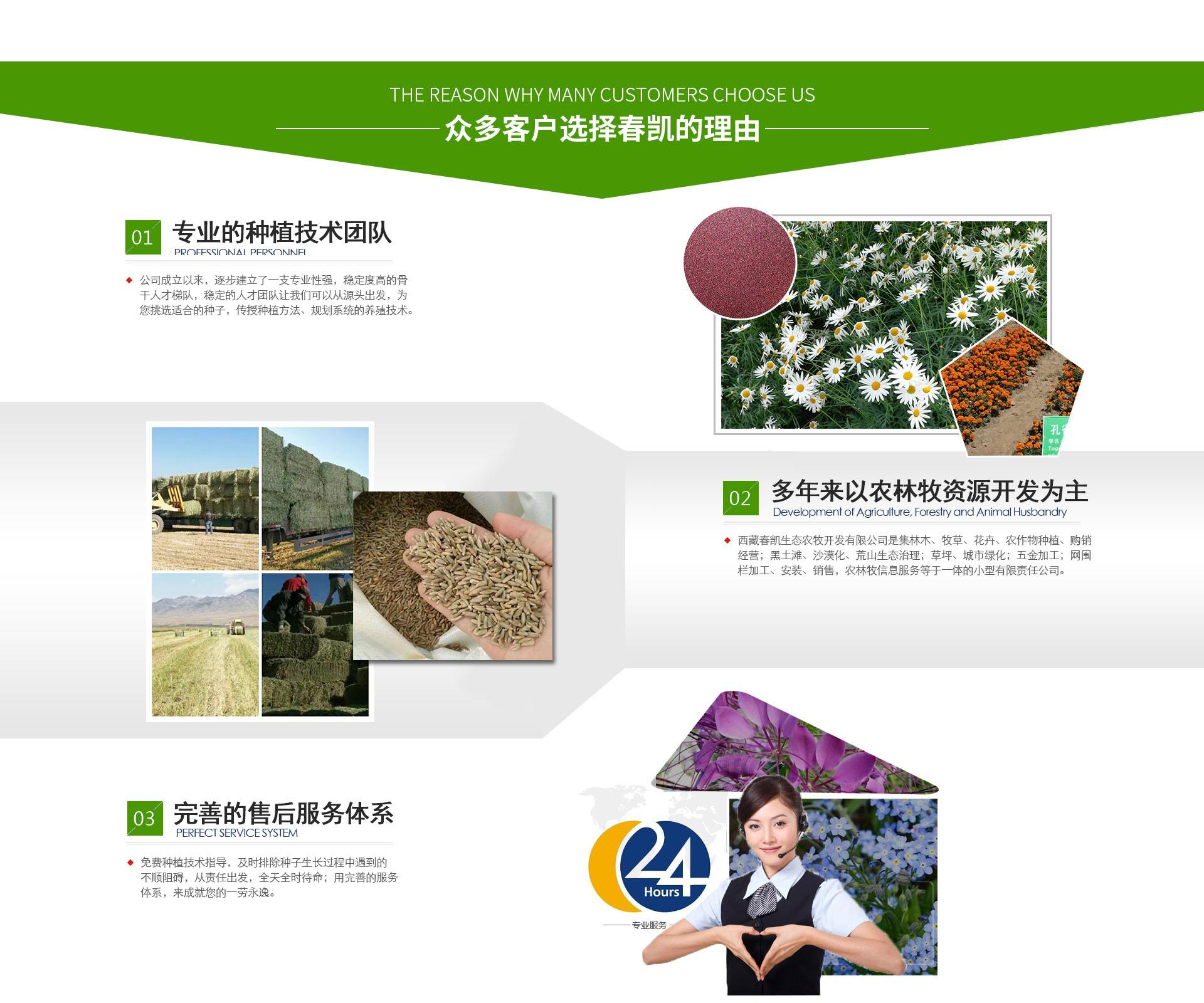 西藏生态农牧开发