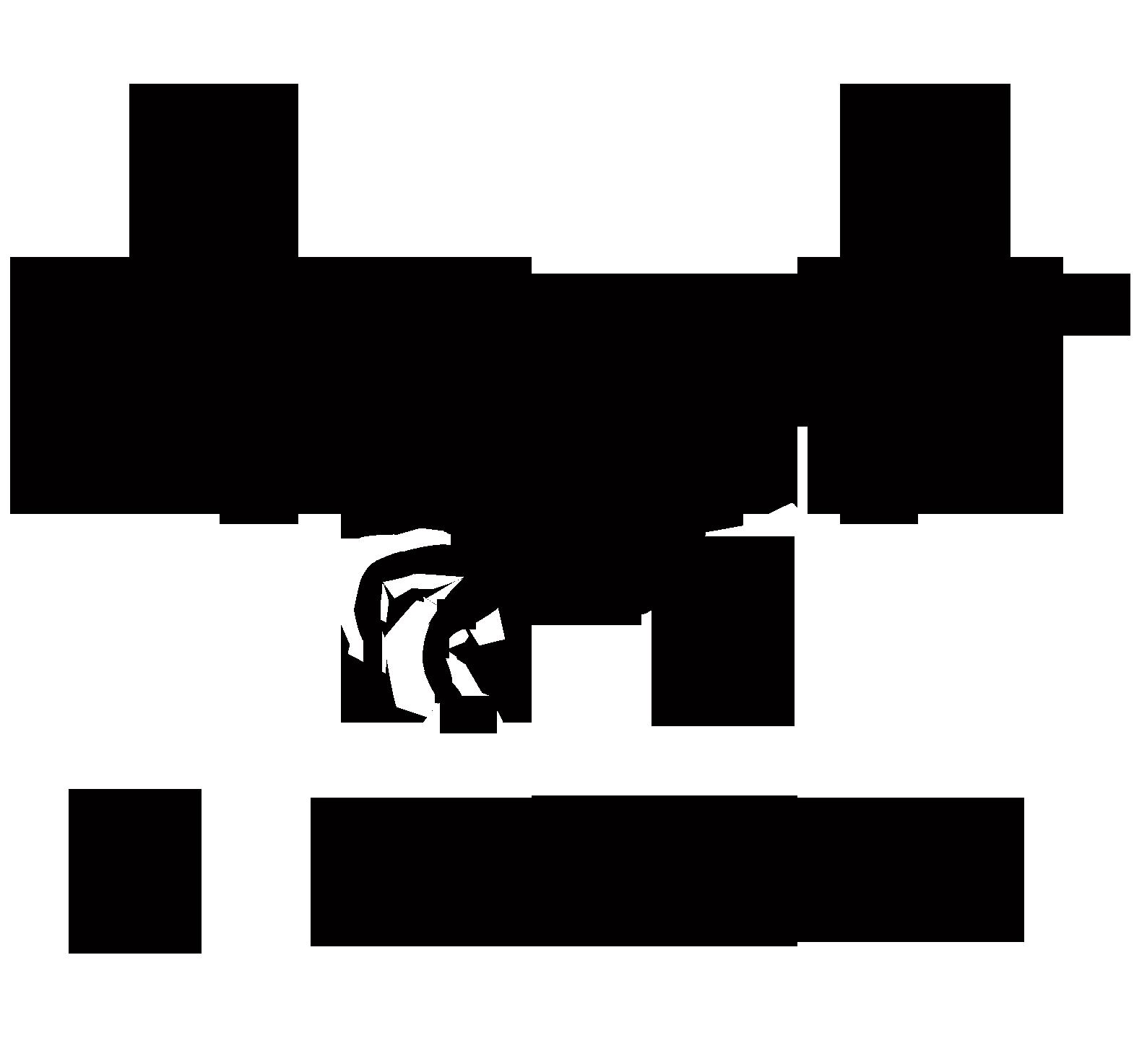 量子王二力盘锦河蟹