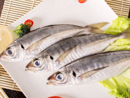 Horse Mackerel(巴浪鱼)