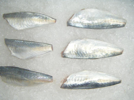 Horse Mackerel HGT(三去巴浪鱼)