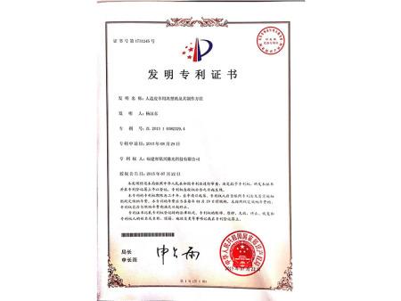 实用新型专利 (11)