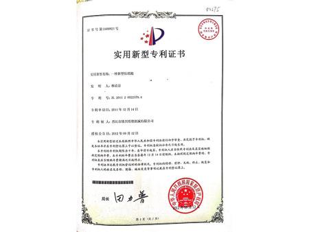 实用新型专利 (12)