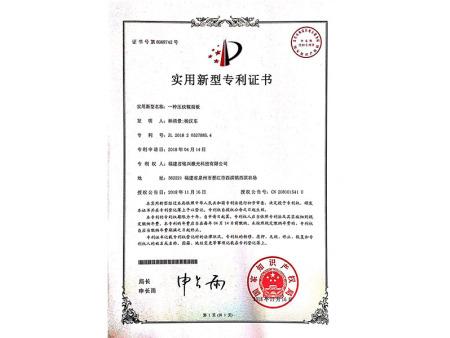 实用新型专利 (13)
