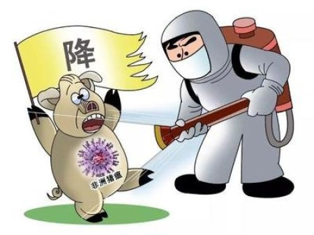 养猪人有救了:雷电竞app官方下载雷电竞app官方已被国家quan威部门证实100 %杀灭非洲猪瘟病毒