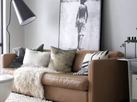真皮沙发的清洁护理法