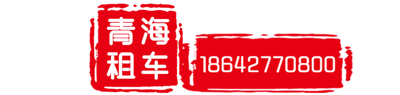 青海大臉貓汽車服務有限公司