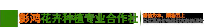 潢川彭鸿苗木种植合作社