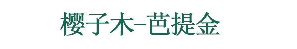 青岛樱子木贸易有限公司