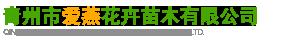 青州市愛燕花卉苗木有限公司