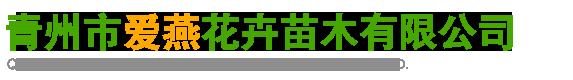 青州市爱燕花卉苗木有限公司