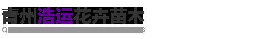 青州浩运花卉苗木