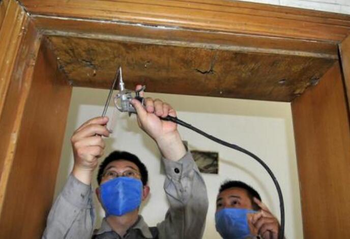 重慶專業白蟻防治