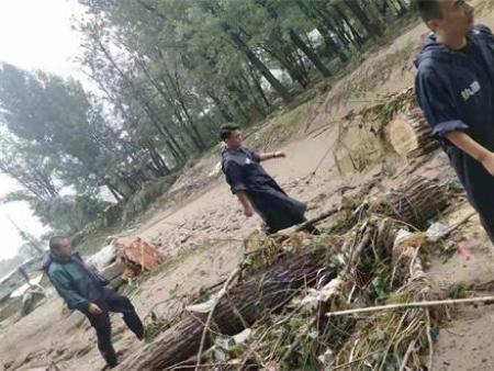我公司到青州弥河湿地公园开展救灾工作
