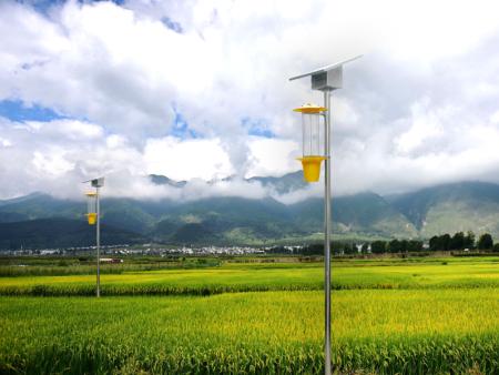 高效频振雷竞技app官网网址灯新乡市绿色园林新能源有限司
