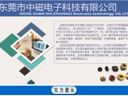 东莞市中磁电子科技有限公司