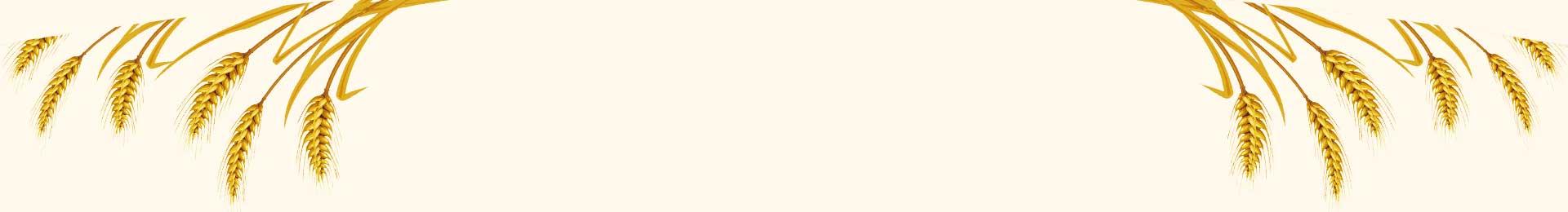 銀川面包|銀川面包廠家