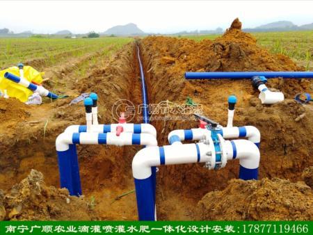 广西甘蔗双高项目滴灌工程设计安装单位(南宁广顺公司)