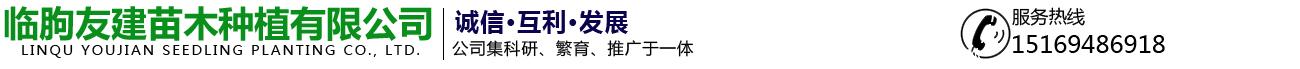 临朐友建苗木种植有限公司