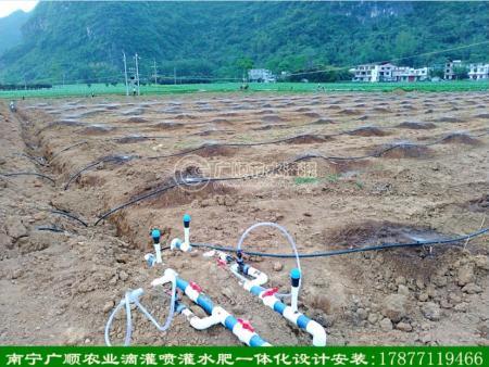 广西施肥器 南宁施肥泵 滴灌水肥机