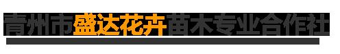 青州市盛达花卉苗木专业合作社