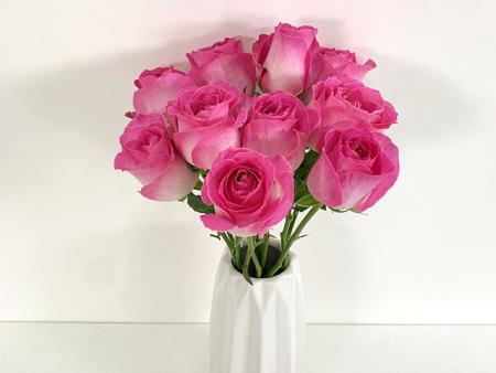花真探-玫瑰