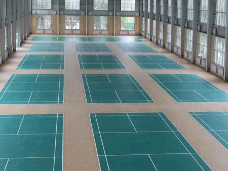 南宁PVC运动塑胶地板厂家批发