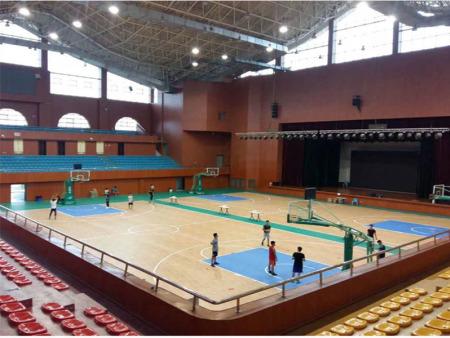运动木地板,篮球馆木地板