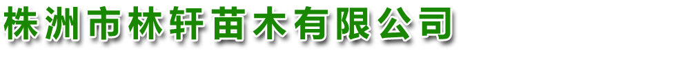 株洲市林轩苗木有限公司
