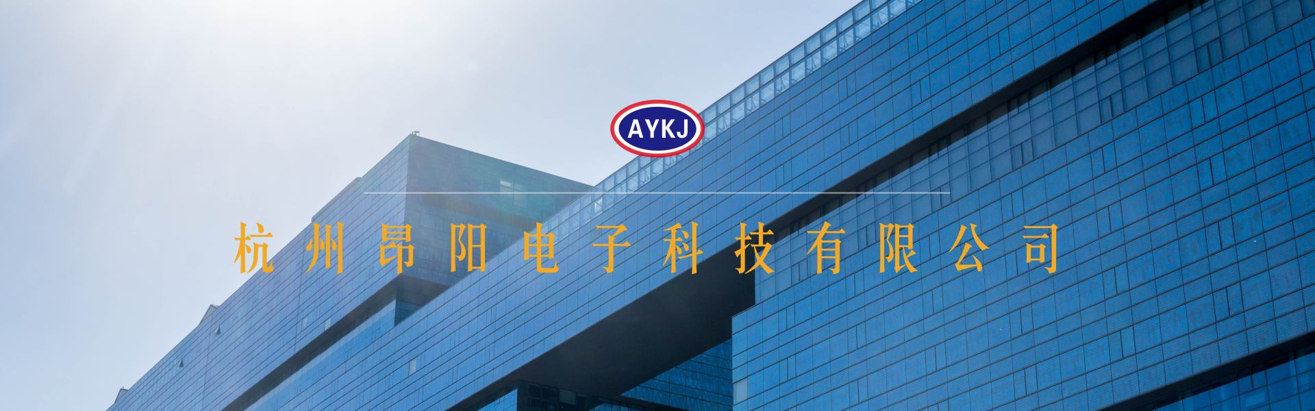 杭州昂陽電子科技有限公司