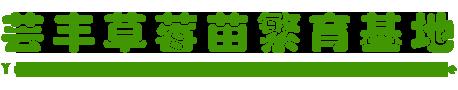 宽甸满族自治县杨木川镇芸丰草莓苗繁育基地