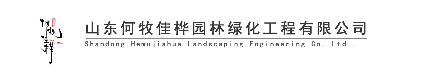 山东何牧佳桦园林绿化工程有限公司
