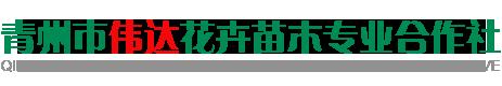 青州市伟达花卉苗木合作社