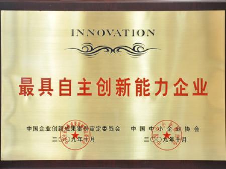 最具自主创新能力企业