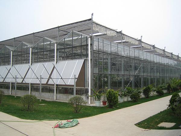 現代智能玻璃溫室大棚優點和用途