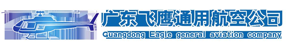广东飞鹰通用航空有限公司