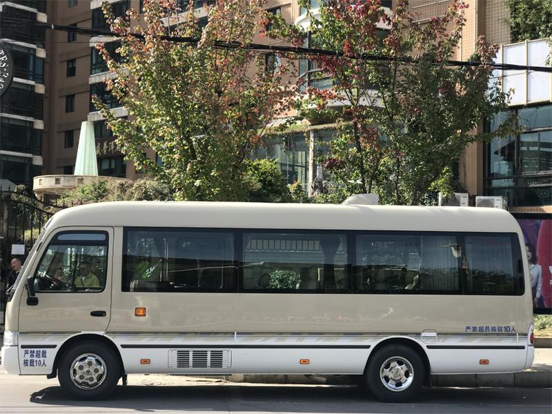 豪华考斯特VIP10座-大型车
