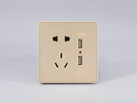 华悦金双USB五孔