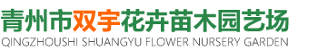青州市双宇花卉苗木园艺场