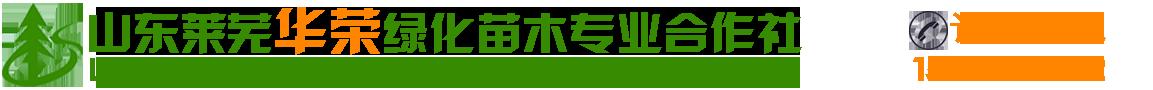 山东莱芜市华荣绿化苗木种植专业合作社