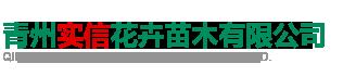 青州实信花卉苗木有限公司