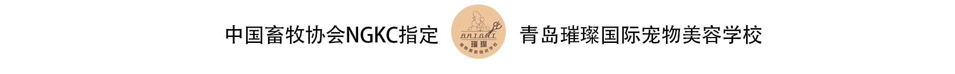 青岛璀璨宠物美容有限公司
