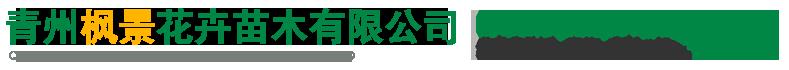 青州枫景花卉苗木有限公司