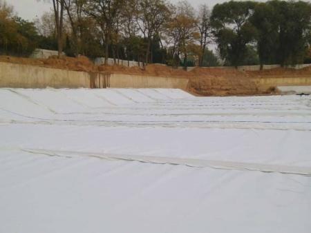 2.0hdpe土工膜